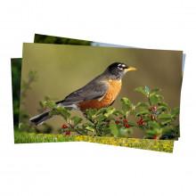 Papel Fotográfico Glossy Brilhante | 230g tamanho A4 | Pacote com 50 folhas